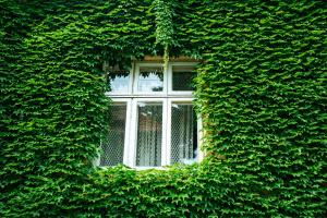 Ecobonus e Decreto Crescita, perplessi i costruttori di impianti: