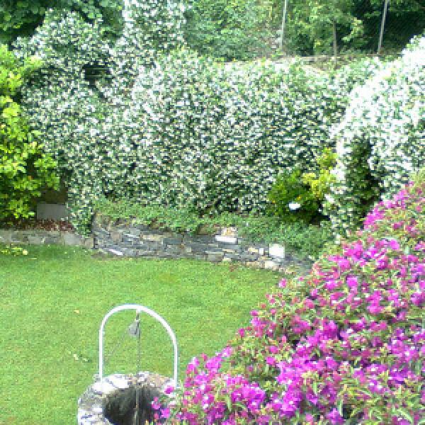 Giardino classico