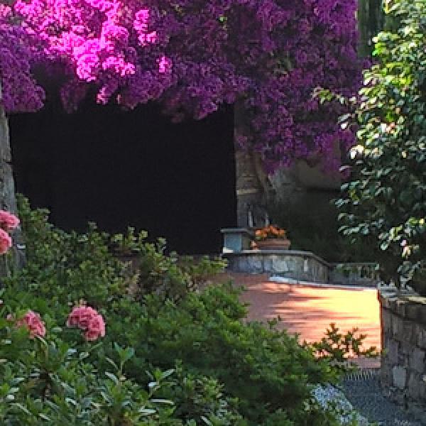 Giardino d'entrata