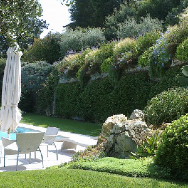 Giardino moderno con piscina