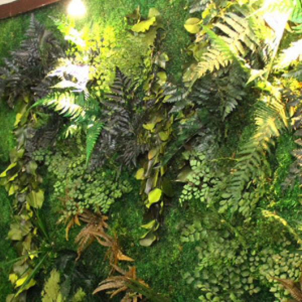 Parete verde indoor