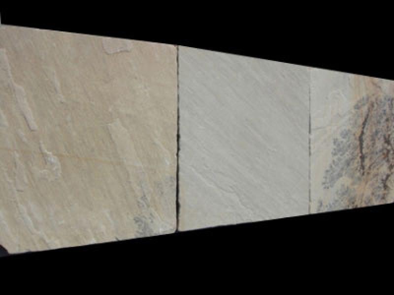 Quarzite mint fossil