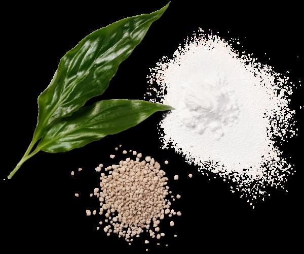 Lo zucchero fatto con le fibre degli scarti agricoli