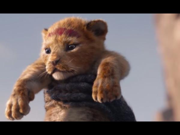 Il Re leone, ecco il primo teaser del nuovo film