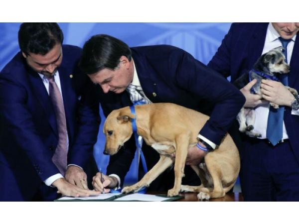 Bolsonaro ha fatto firmare al suo cane una legge contro gli abusi sugli animali
