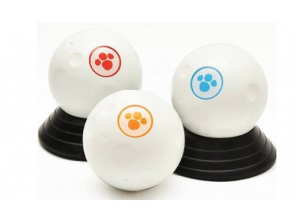 Nuove frontiere del tech: la pallina smart con cui far divertire cani e gatti