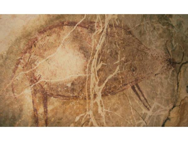 Ecco il disegno più antico della storia dell'essere umano moderno