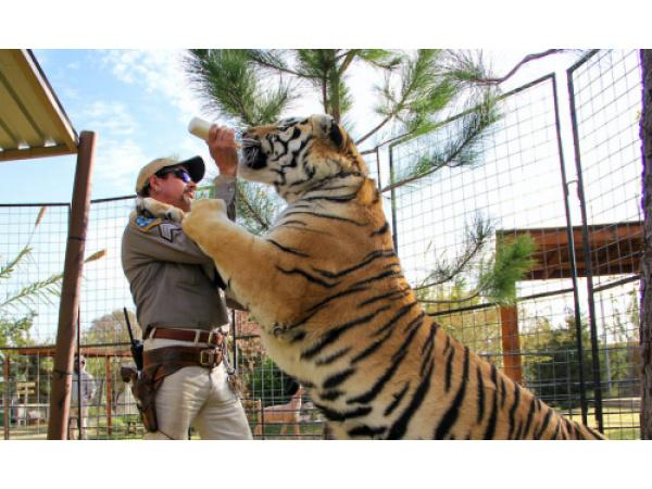Dopo il documentario, arriva anche la serie su Tiger King