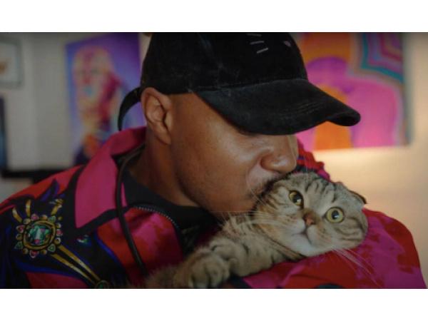 Arriva Cat People, la docuserie per gli amanti dei gatti