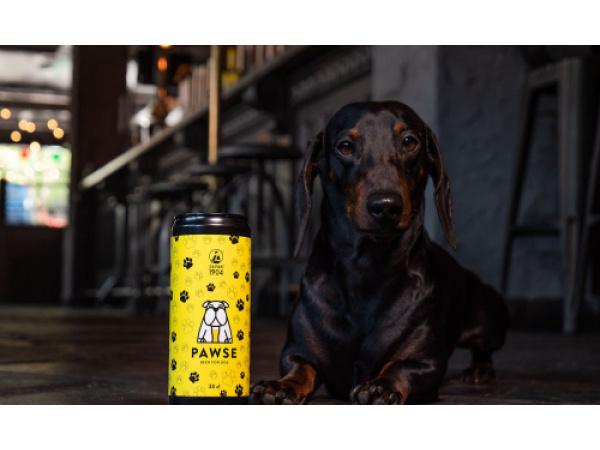 Pawse è la prima birra per cani italiana